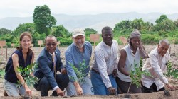 Timberland Steps Help Reintroduce Cotton Farming