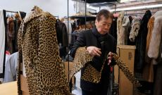 California Signs Fur Ban into Law, a US State First