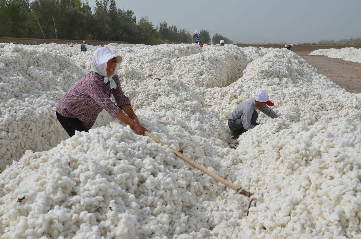 Xinjiang Confidential: What Auditor Exodus Means for Apparel Sourcing