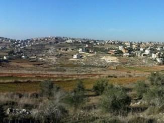 بلدة الدوير