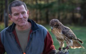 Falconry Guided Trip in Asheville