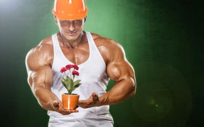 Augmenter son taux de testostérone… !