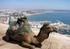 الأعرج يوضح: مدافع أكادير أوفلا هافين مشات