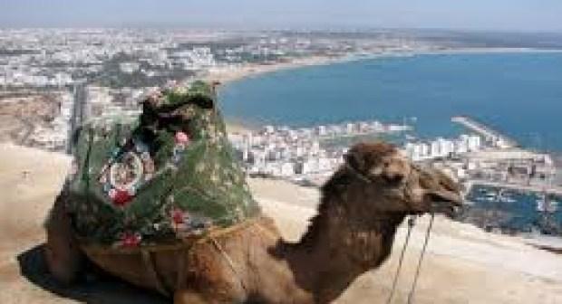مائة ألف سائح زاروا أكادير خلال أبريل