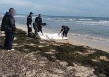 جثة ثلاثيني وجدت ملقاة بشاطئ أكلو تستنفر الدرك الملكي