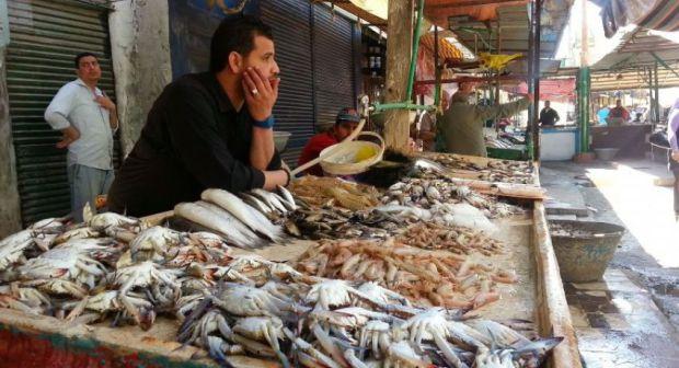 """إطلاق حملة """" خليه يعوم"""" لمقاطعة الأسماك خلال رمضان"""