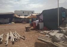 أكادير: جمعية بتيكيون تنصب سوقا عشوائيا للأضاحي يخالف قرار العمالة والبلدية