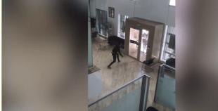 بالفيديو: شفار حاول سرقة بنك والعاقبة كما ستتابعون