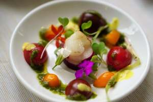Edible flowers in dish on dinner plate