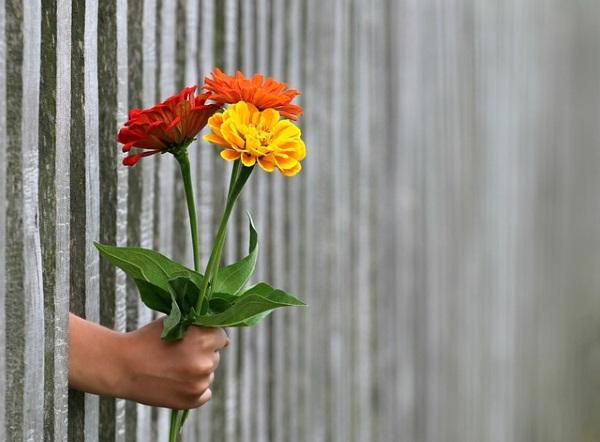 花を贈ります