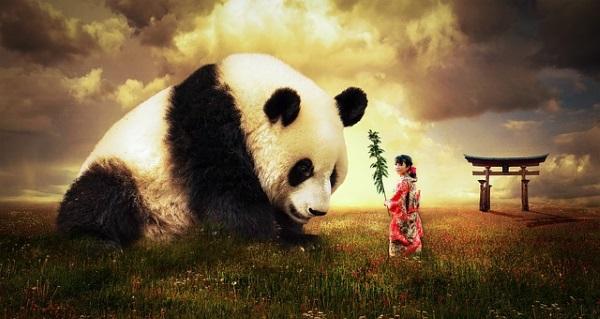 very giant panda