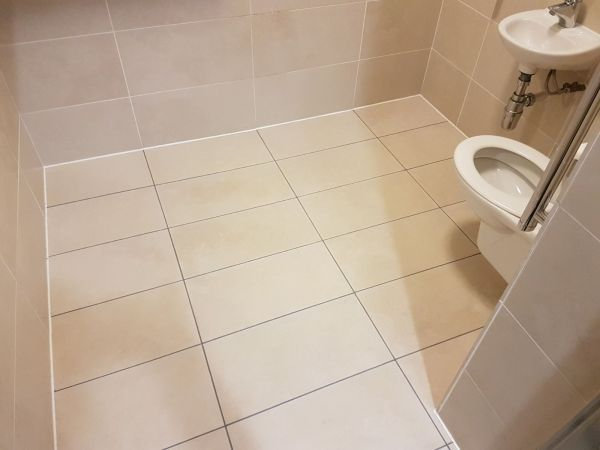 Commerical Porcelain Toilet floor Milton Keynes After Grout Colouring