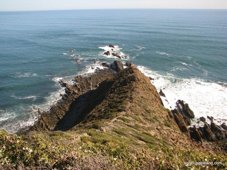 Cape-Liptrap-Coastal-Park (18)