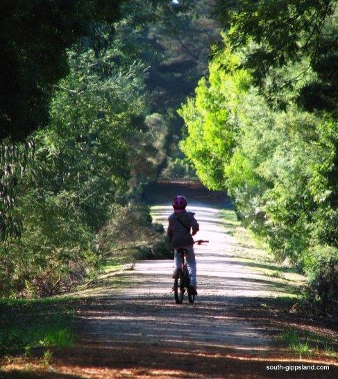 Fish-Creek-Rail-Trail (11)