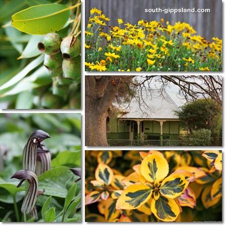 Leongatha-house-and-gardens