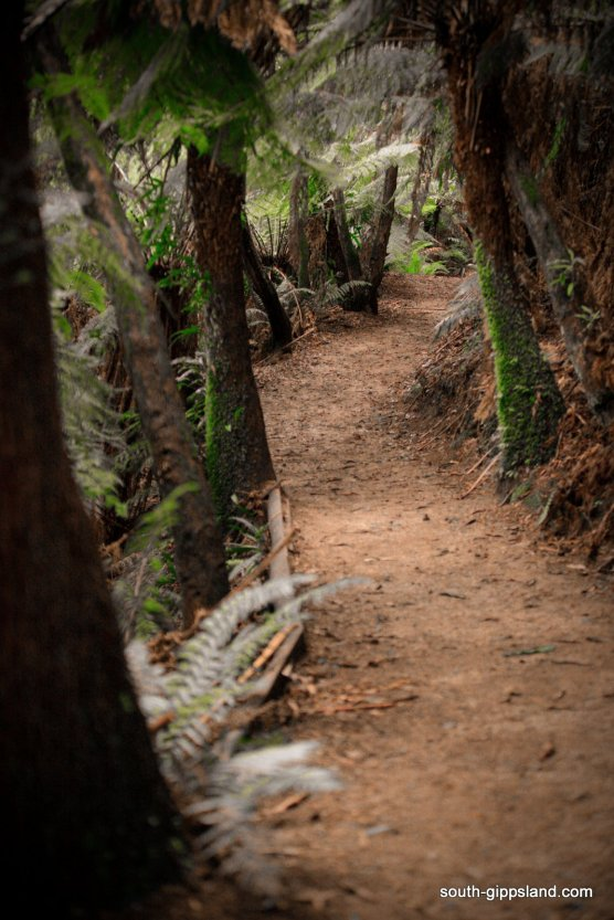 Mount-Worth-State-Park (149)