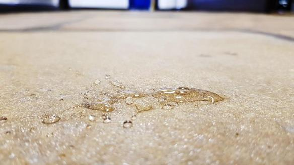 Office Yorkstone Floor After Sealing Water Test Norton Sheffield