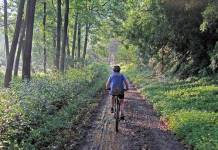 Mountain biking South Africa