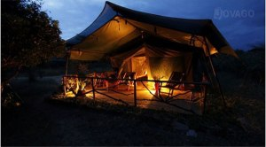 Aruba Camp and Safaris