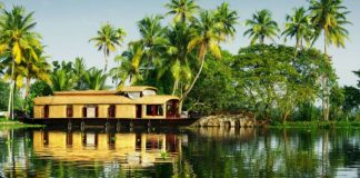 Top 8 Things to Do in Kerala Beyond Your Imagination