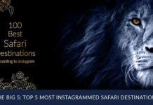The most popular safari destinations, according to Instagram
