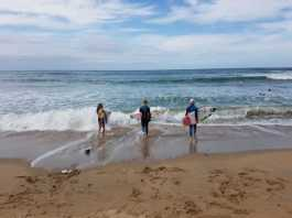 10 Amazing Facts about the KZN South Coast