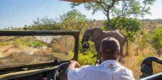 Luxury safari underneath the golden African sky - Shishangeni by BON Hotels