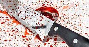 Slovakian diplomat's wife stabbed and mugged
