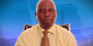 Herman Mashaba elected mayor of Johannesburg