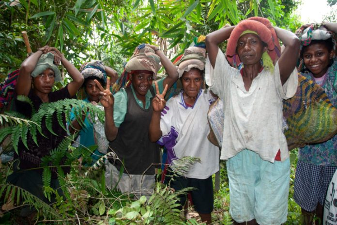 Residents from Indagen village helping the expedition team to field camp in the Cromwell Mountains of Papua New Guinea. Credit RBG Kew