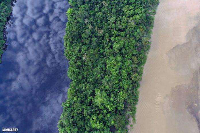 Blackwater lake, rainforest, and the whitewater Zacambu River in the Peruvian Amazon. Photo by Rhett A. Butler for Mongabay.