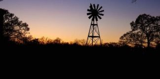 Farm attack, woman assaulted, child (3) severely traumatised, Nigel