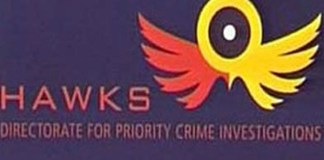 Hawks recover R435k worth of illicit cigarettes