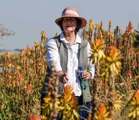 Renishaw Hill's landscaper, Elsa Pooley