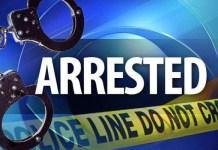 Couple arrested for brutal murder of 2 elderly people in Oranjeville