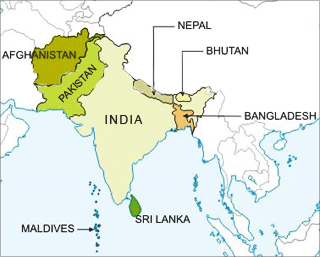 DOES SAARC HAVE A FUTURE? – South Asia Journal