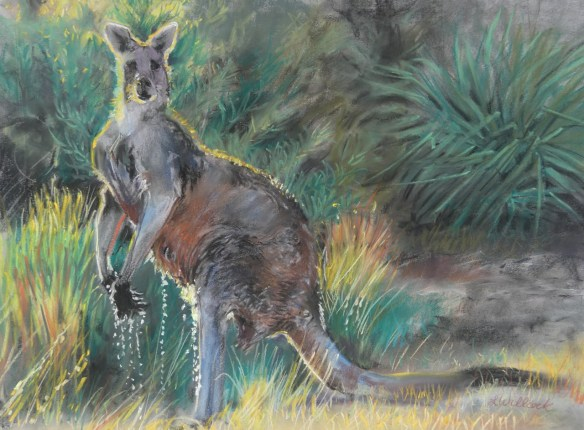 He Hopped Across The Creek - 60cm x 74cm