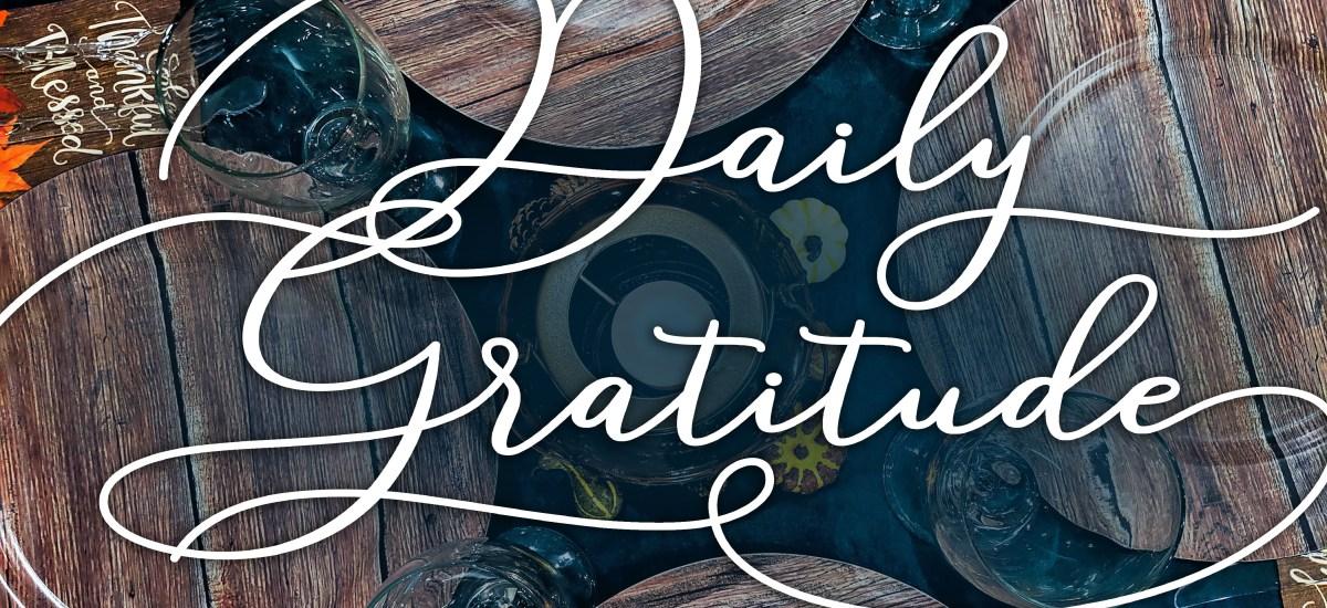 Gratitude Check In