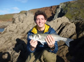 sea-bass-from-devon