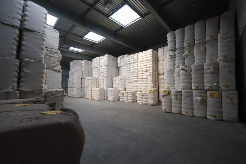 cotton exports