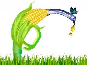 corn prices production ethanol