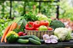 food consumption factors