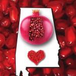 Alabama Pomegranate Association Logo