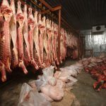 Cow meat in a slaughter house-2