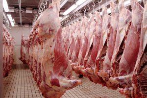 beef exports china