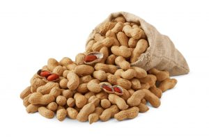 peanut supply