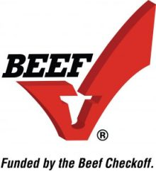 beef checkoff focus