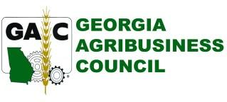 georgia legislative