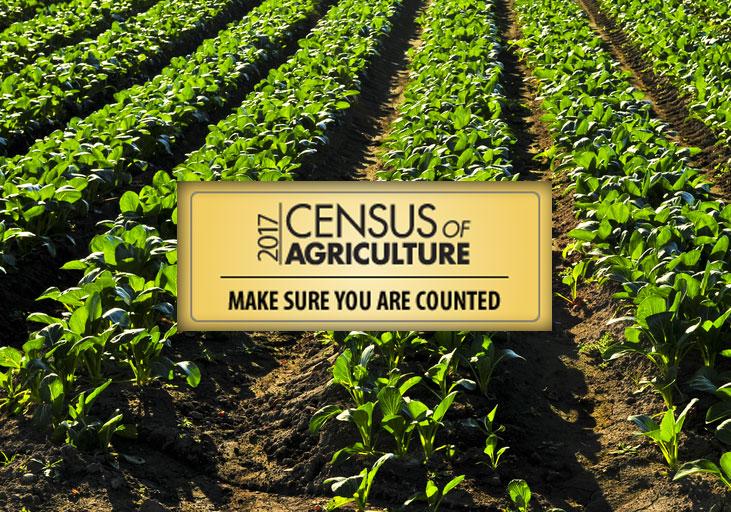 census agriculture