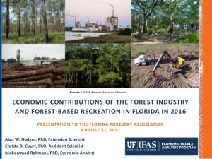 forest industry